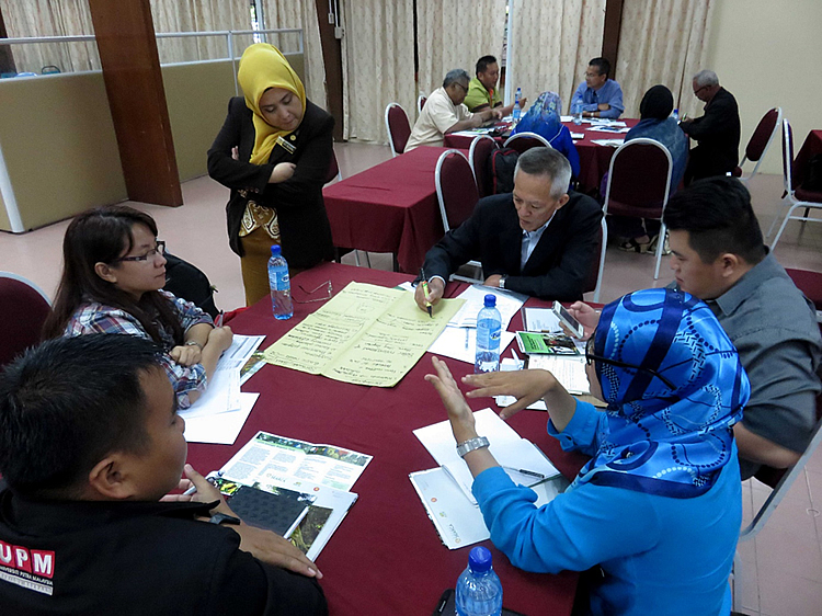 Participants tackle the status and challenges of social forestry in Malaysia during the focus group discussion.
