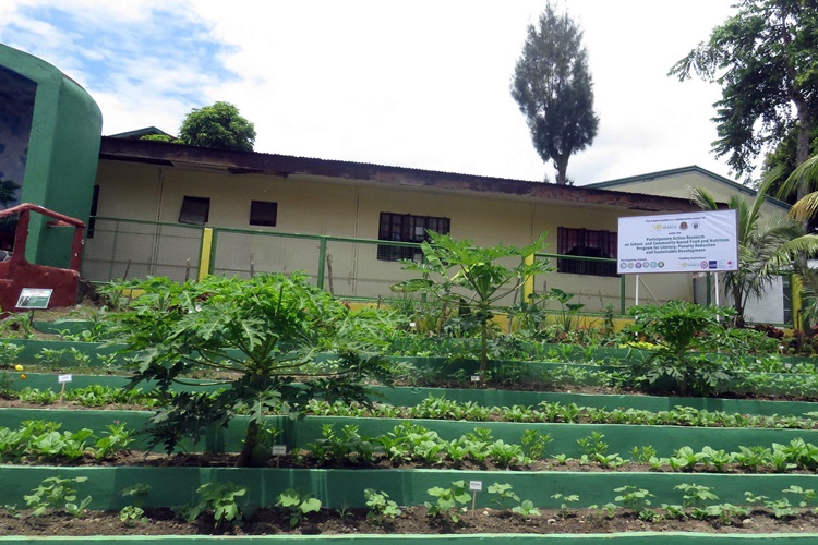 school and home gardens as learning sites and source of nutritious food and income launches in laguna philippines 5