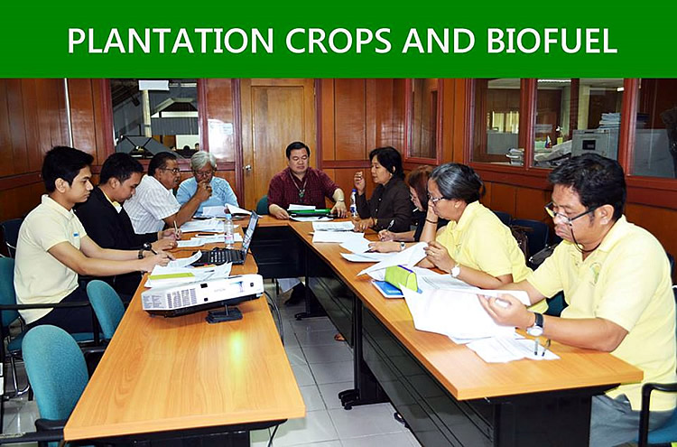 The participants from Plantation Crops and Biofuel group [br] (SOURCE: DA-BAR)