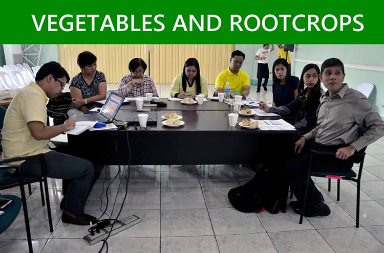 The participants from Vegetables and Rootcrops group [br] (SOURCE: DA-BAR)