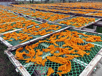 Sun drying of rice crackers in Leganes, Iloilo.