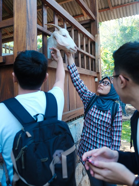 Students Enjoy Learning at the Sustainability Transitions Summer School