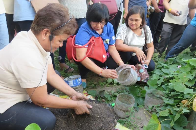 Ms. Corazon Compuesto, school garden coordinator of Pedro Guevara Memorial National High School, demonstrates seedling production