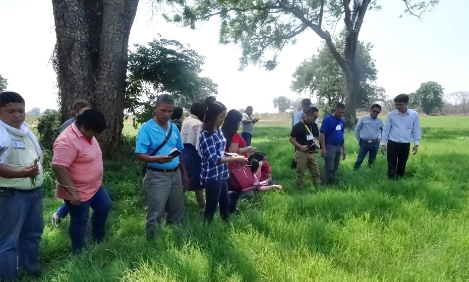 Staff of the Nakorn Ratchasima Animal Nutrition and Research and Development Center in Pakchong accompanied the participants to observe their forage plantation.
