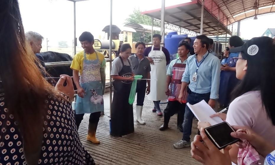 Participants were given a demonstration on artificial insemination of dairy cattle at Aura Farm in Khon Kaen Province.