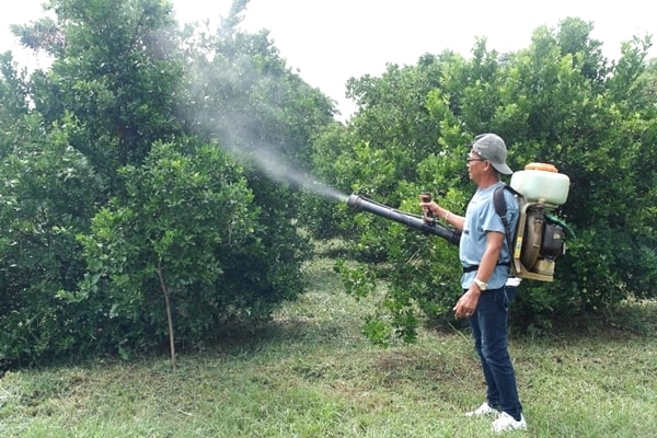 Actual demonstration of using the mist blower for fertilizer and pesticide application.