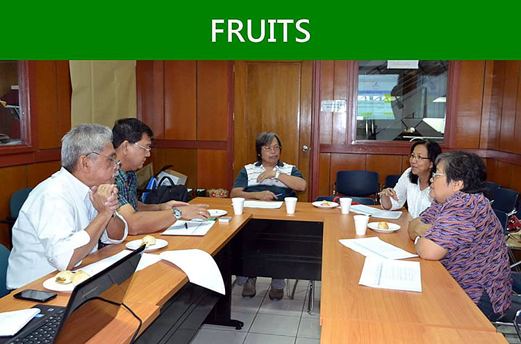 The participants from Fruits group [br] (SOURCE: DA-BAR)