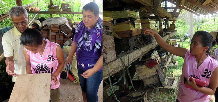 Project leader Dr. Dulce J. Mostoles and bee farm owners explaining cultural management practices of stingless bees in Casiguran, Sorsogon