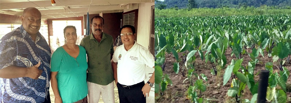 Visit of Director Jone Sovala and Dr. Lope B. Santos III to farming community and taro plantation in Suva, Fiji on 9 February 2018.
