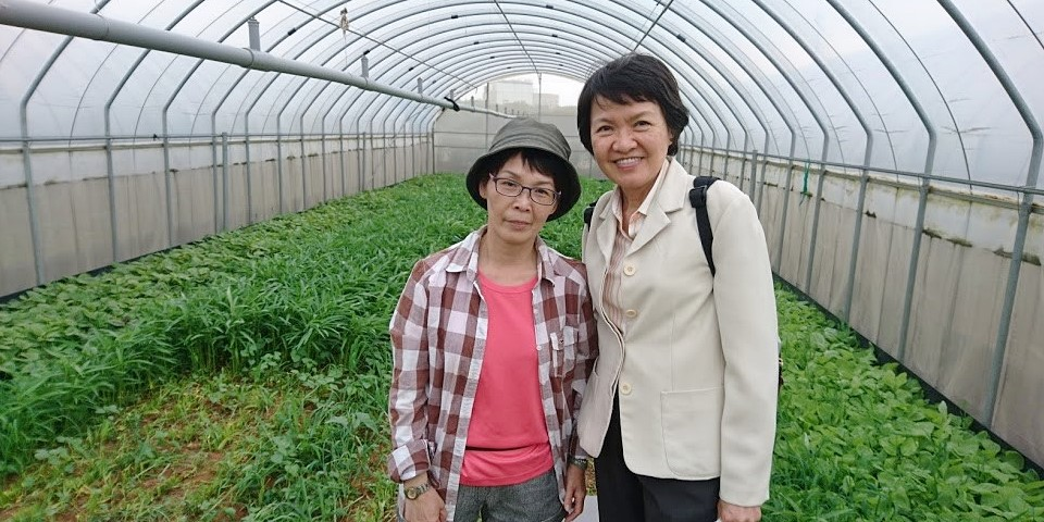 Visit to an organic farm and farmers at Taoyuan, Taiwan, where farmers are encouraged to invest in greenhouses through agricultural loans provided by the government.