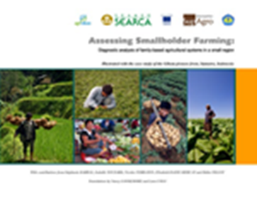 Assessing Smallholder Farming: Diagnostic Analysis of Family-Based Agricultural Systems in a Small Region