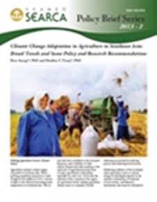 Climate Change Adaptation in Agriculture in Southeast Asia: Broad Trends and Some Policy and Research Recommendations