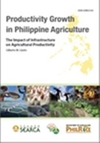 The Impact of Infrastructure on Agricultural Productivity