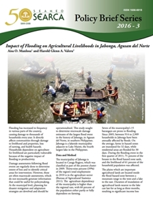 Impact of Flooding on Agricultural Livelihoods in Jabonga, Agusan del Norte