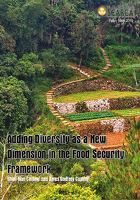Adding Diversity as a New Dimension in the Food Security Framework