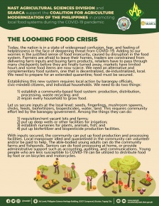 COVID-19 Advisory No. 1: LOOMING FOOD CRISIS