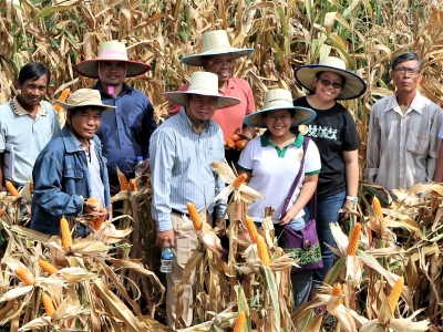 ATMI-ASEAN and MAFF-GDA co-organize back-to-back national level events focused on Cambodia's maize industry