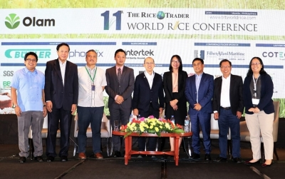 Agri experts share varying perspectives on the Philippine Rice Tariffication Law during SEARCA-led WRC parallel session