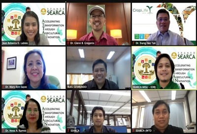 SEARCA webinar discusses strengthening seed systems in Southeast Asia